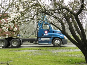 Almond Bloom w Truck 004