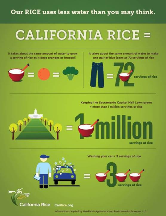 Rice Uses Less Water Than You Think