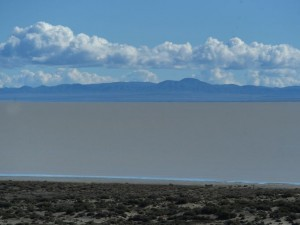Water on Black Rock Desert